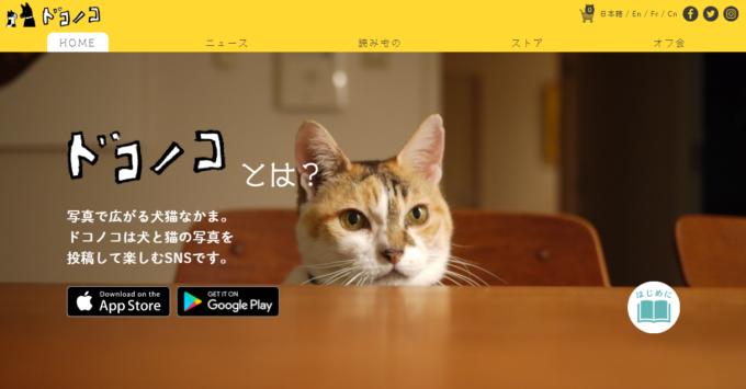 犬と猫の写真を投稿して楽しむSNS「ドコノコ」